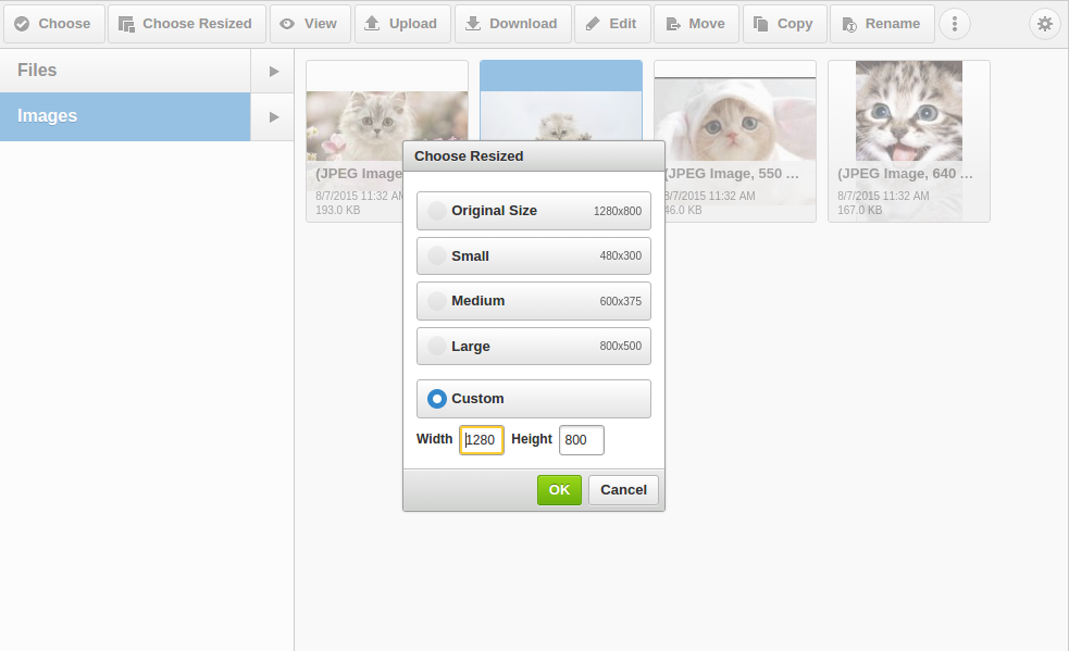New view of CKFinder 'Choose Resized Image' dialog