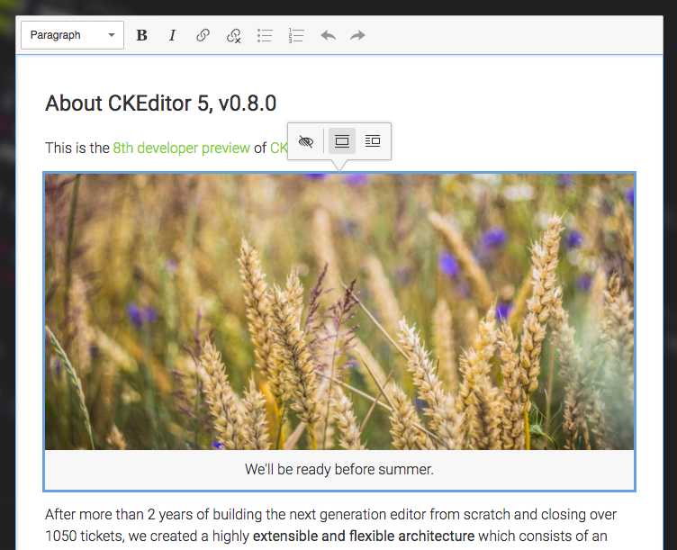 CKEditor 5 v0.8.0 focus on text alternative icon